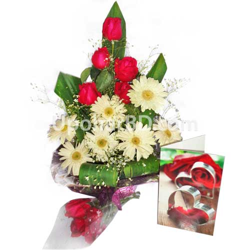 Red roses and gerbera bouquet