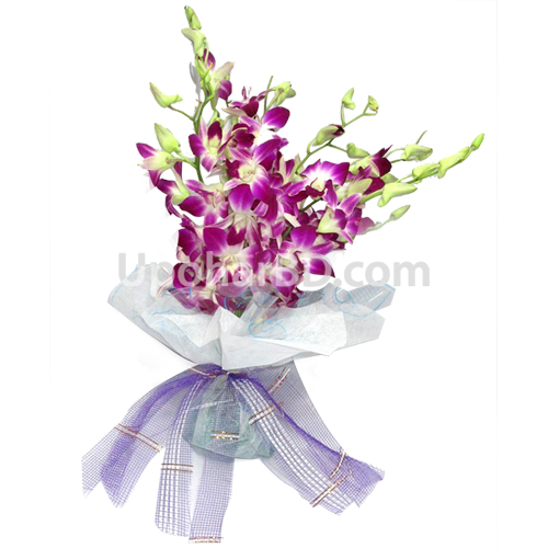 Decorate with Purple Orchid