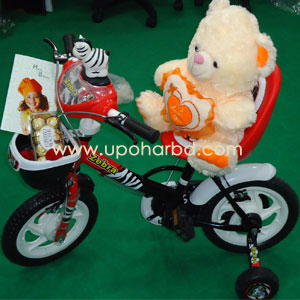 Cycle with Teddy and Chocolate