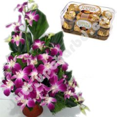 Orchid with ferrero rocher