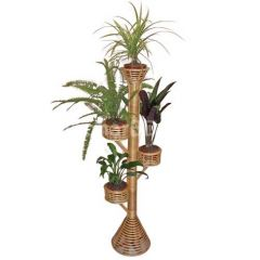 Indoor Cane Plant Stand