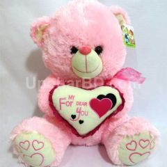 Pink teddy for your valentine