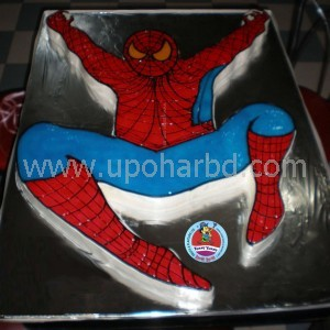 Special Spiderman cake