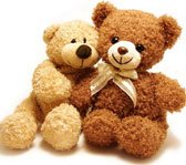 Teddy Bear & Toys