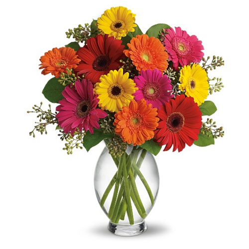 25 Gerbera Daisy Flower in a vase