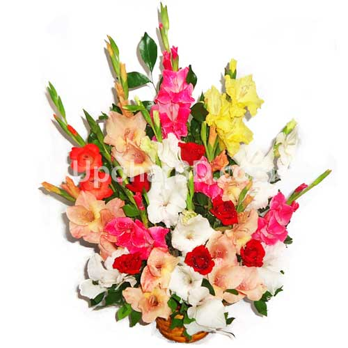 Gladiolus and rose mix