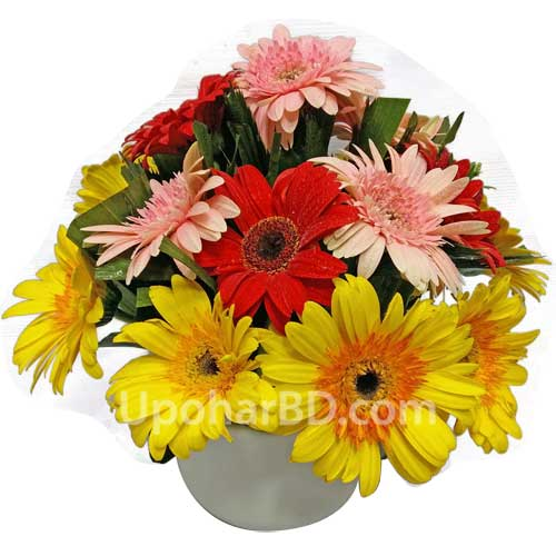 Gerbera with leafs