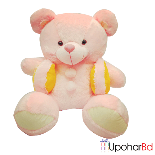 Pink teddy wearing koti
