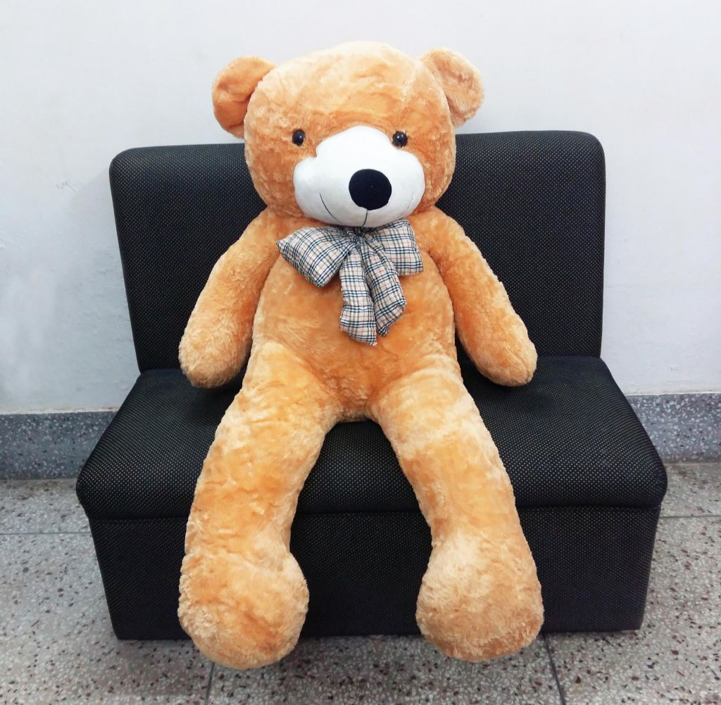 Brown lovely teddy bear with bow tie