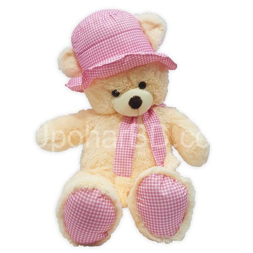 Teddy with pink hat