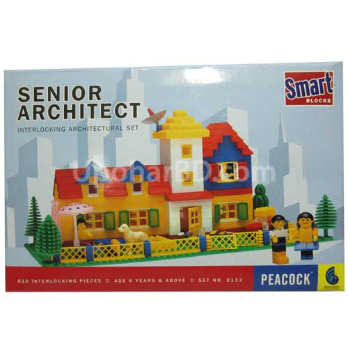 Senior Architect by Peacock