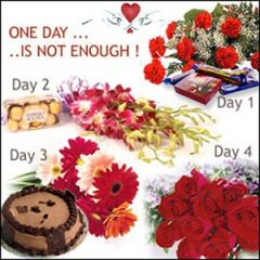 One day is not enough